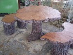Tree Slab Table and Bench